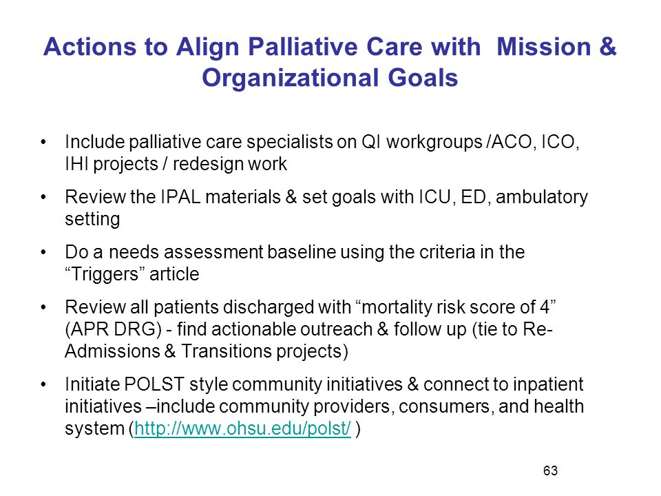 Actions to Align Palliative Care with Mission & Organizational Goals
