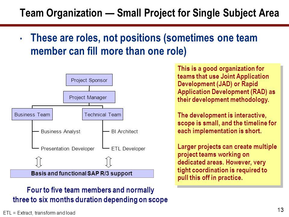Team Organization — Mid-Sized SAP NetWeaver BI Projects