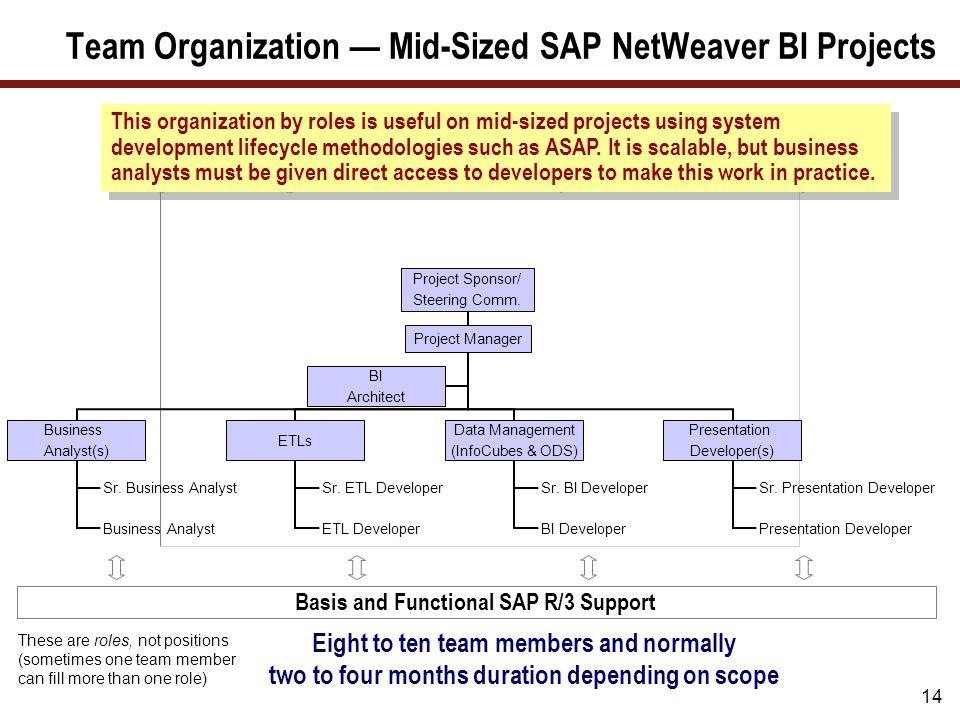 Team Organization — Large SAP NetWeaver BI Projects