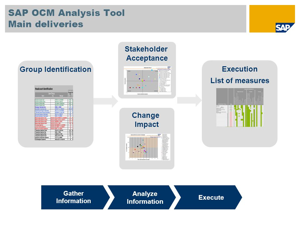 SAP OCM Analysis Tool Main deliveries