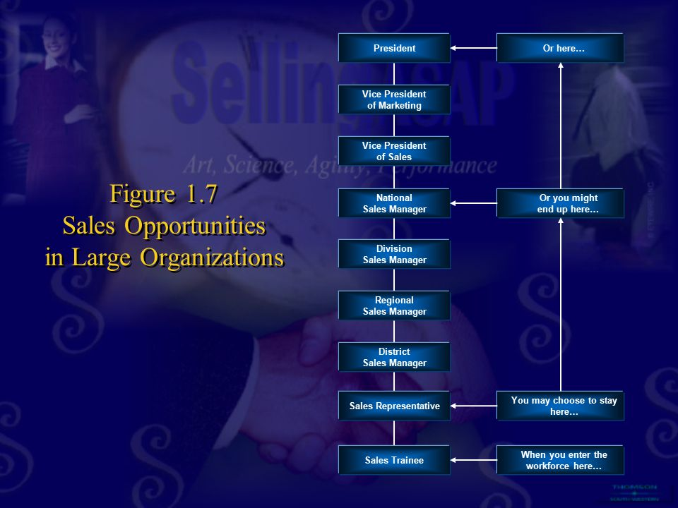 Figure 1.7 Sales Opportunities in Large Organizations
