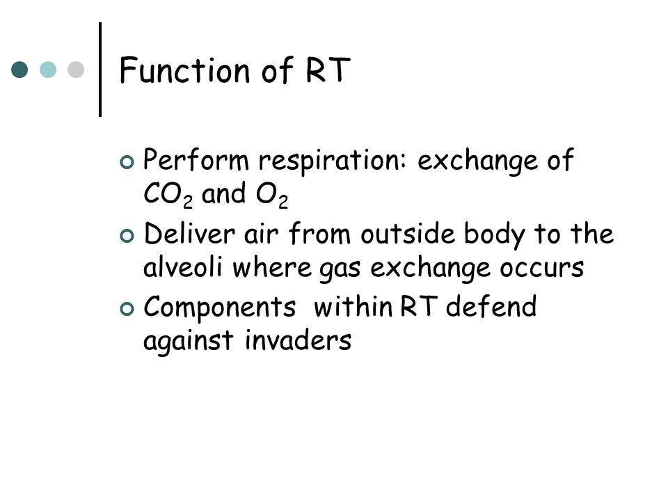 Function of RT Perform respiration: exchange of CO2 and O2