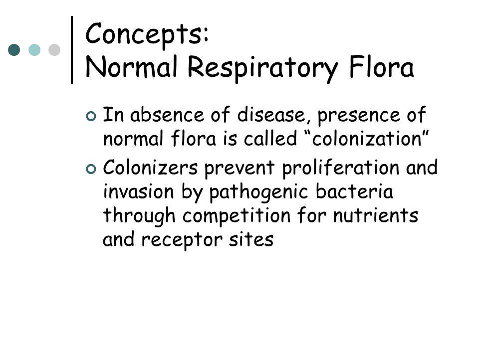 Concepts: Normal Respiratory Flora