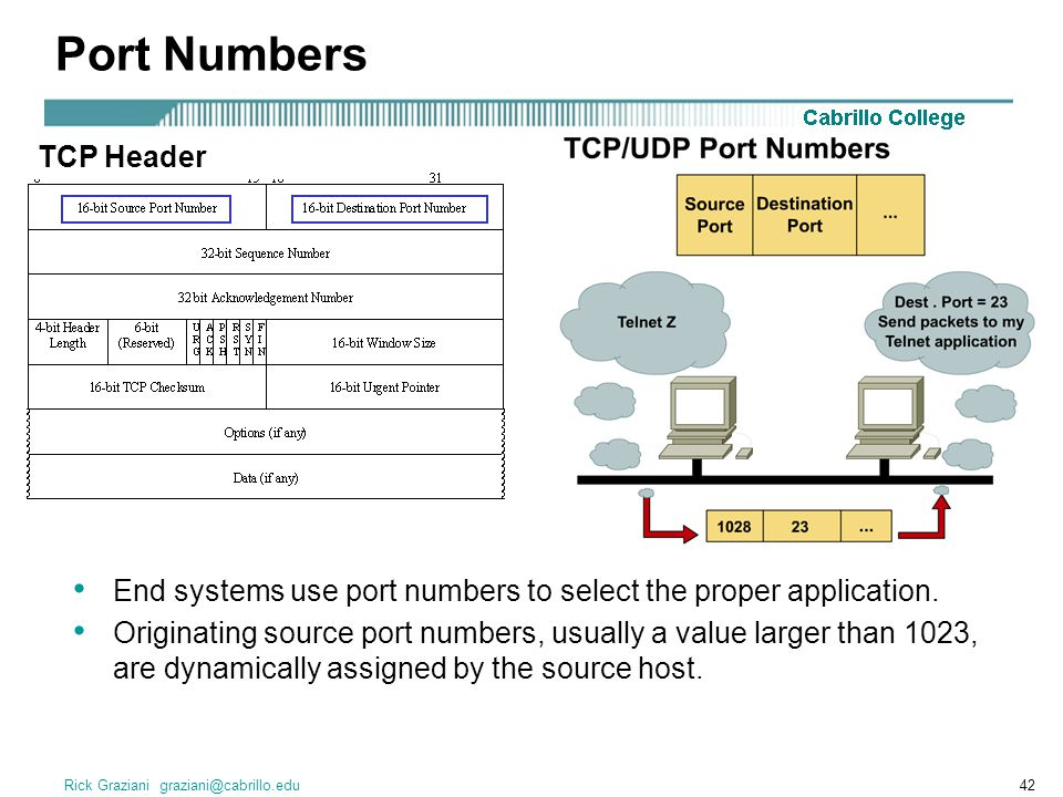 Port Numbers TCP Header TCP Header