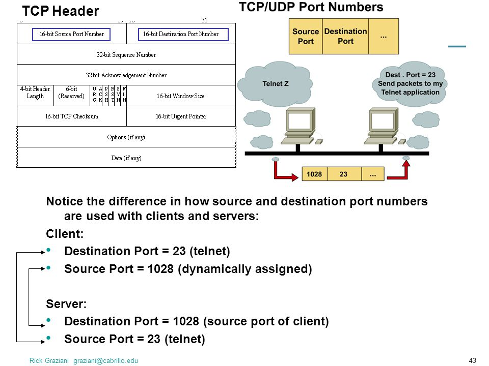 TCP Header Notice the difference in how source and destination port numbers are used with clients and servers: