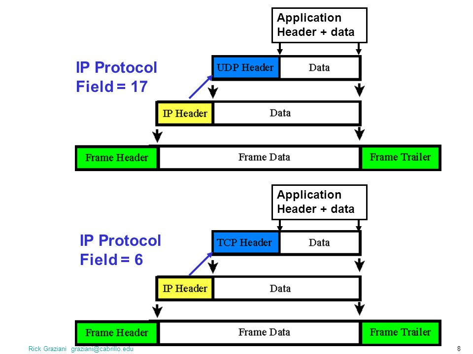 IP Protocol Field = 17 IP Protocol Field = 6 Application Header + data