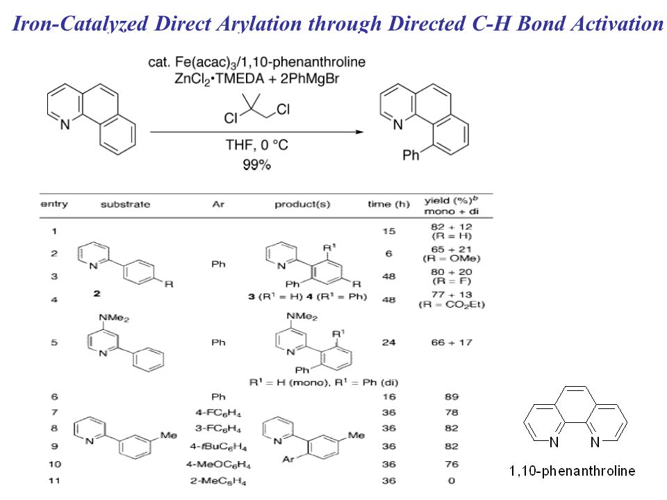 Iron-Catalyzed Direct Arylation through Directed C-H Bond Activation