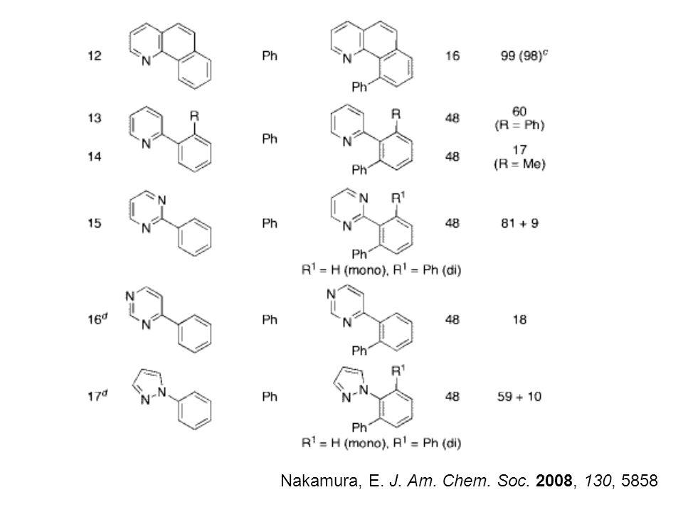 Nakamura, E. J. Am. Chem. Soc. 2008, 130, 5858