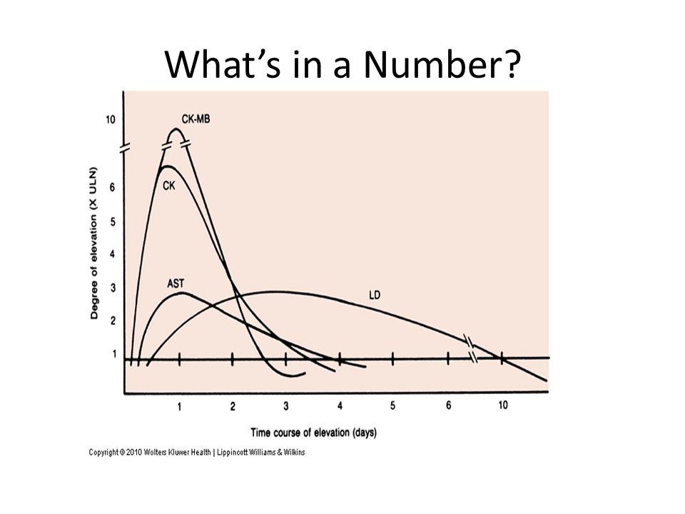 What's in a Number