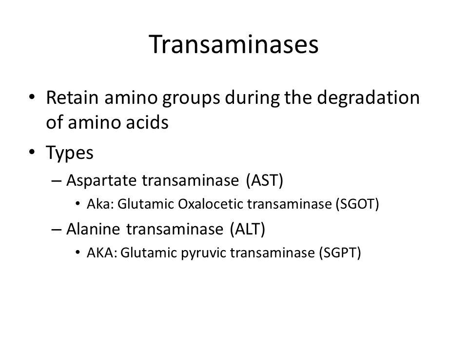 Transaminases Retain amino groups during the degradation of amino acids. Types. Aspartate transaminase (AST)