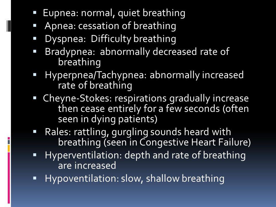 Eupnea: normal, quiet breathing