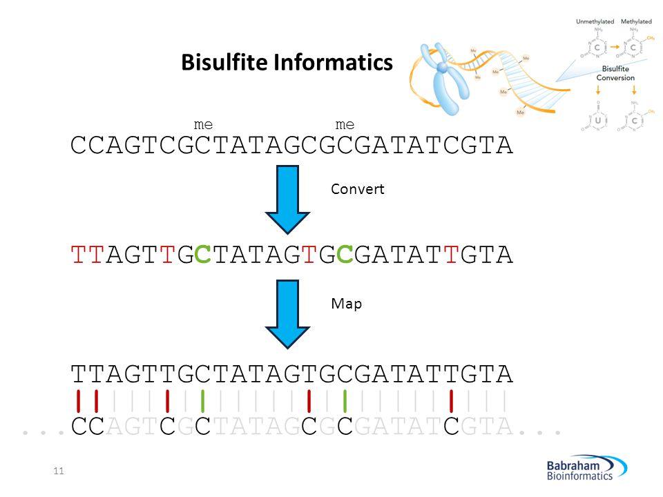 Bisulfite Informatics