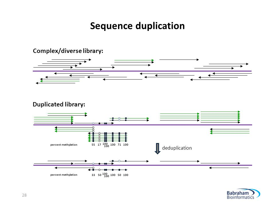 Sequence duplication Complex/diverse library: Duplicated library: