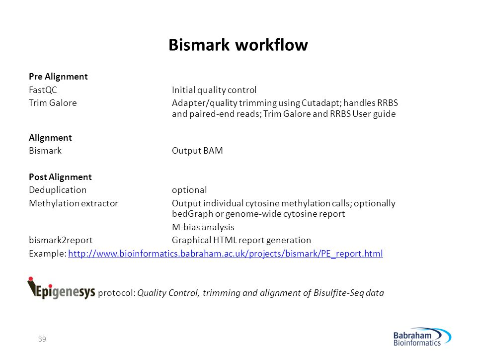 Bismark workflow Pre Alignment FastQC Initial quality control