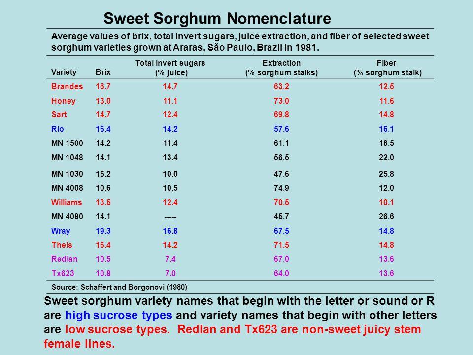 Sweet Sorghum Nomenclature