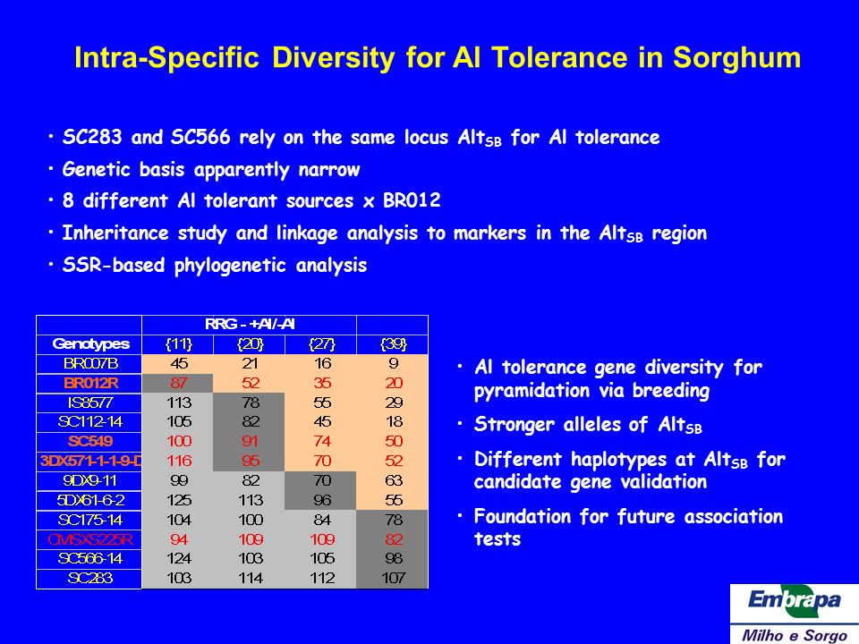 Intra-Specific Diversity for Al Tolerance in Sorghum