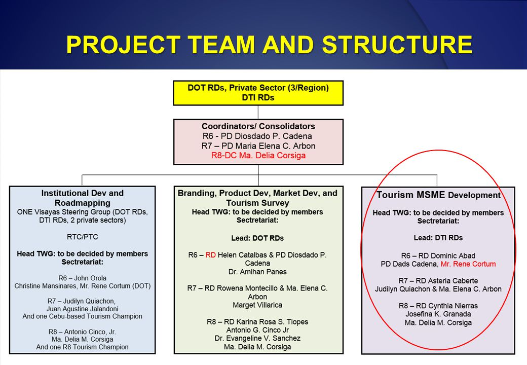 PROJECT TEAM AND STRUCTURE