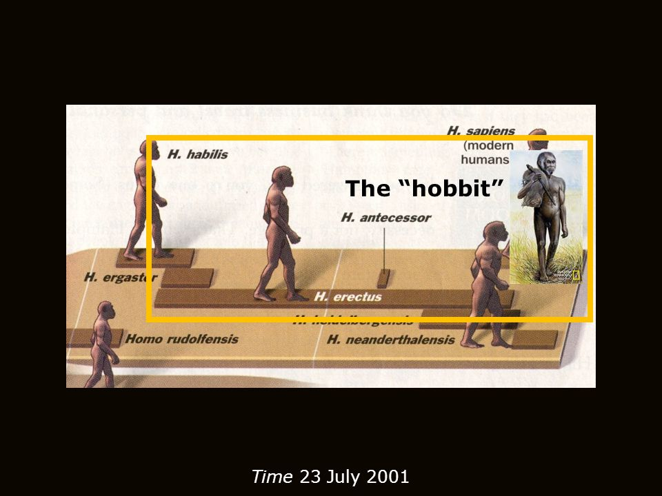 The hobbit Time 23 July 2001
