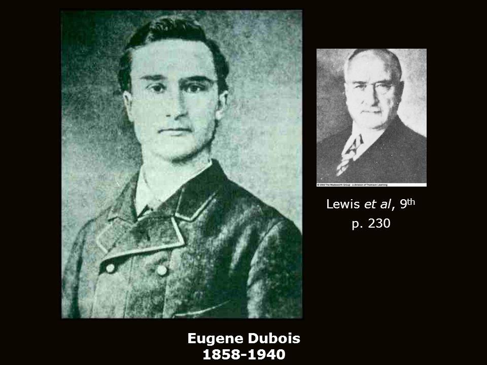 Lewis et al, 9th p. 230 Eugene Dubois 1858-1940