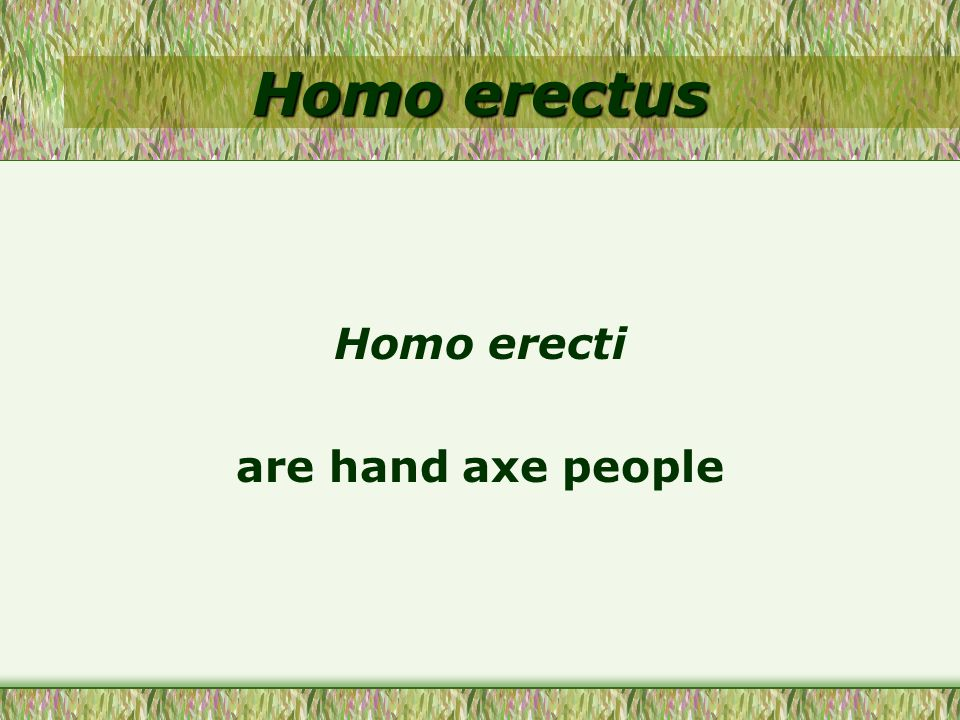 Homo erecti are hand axe people