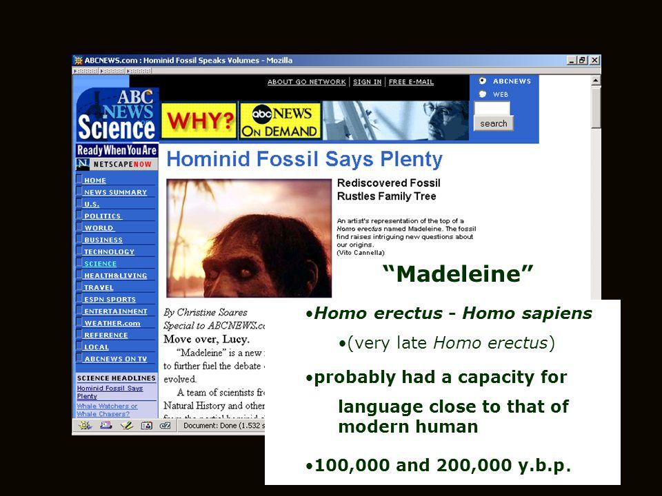 Madeleine Homo erectus - Homo sapiens (very late Homo erectus)
