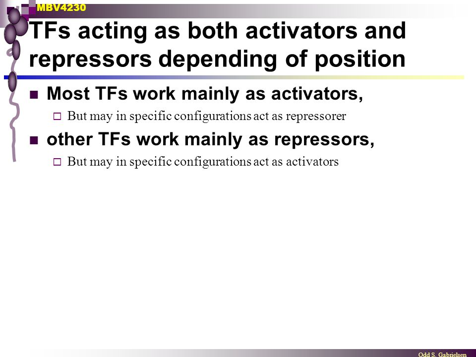 TFs acting as both activators and repressors depending of position