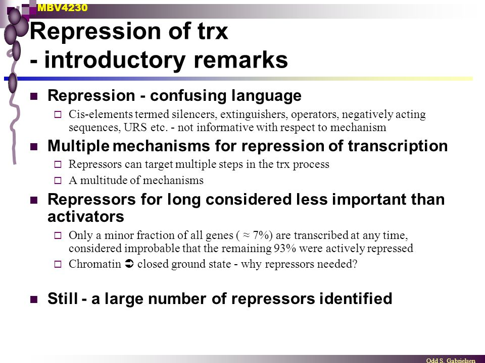 Repression of trx - introductory remarks