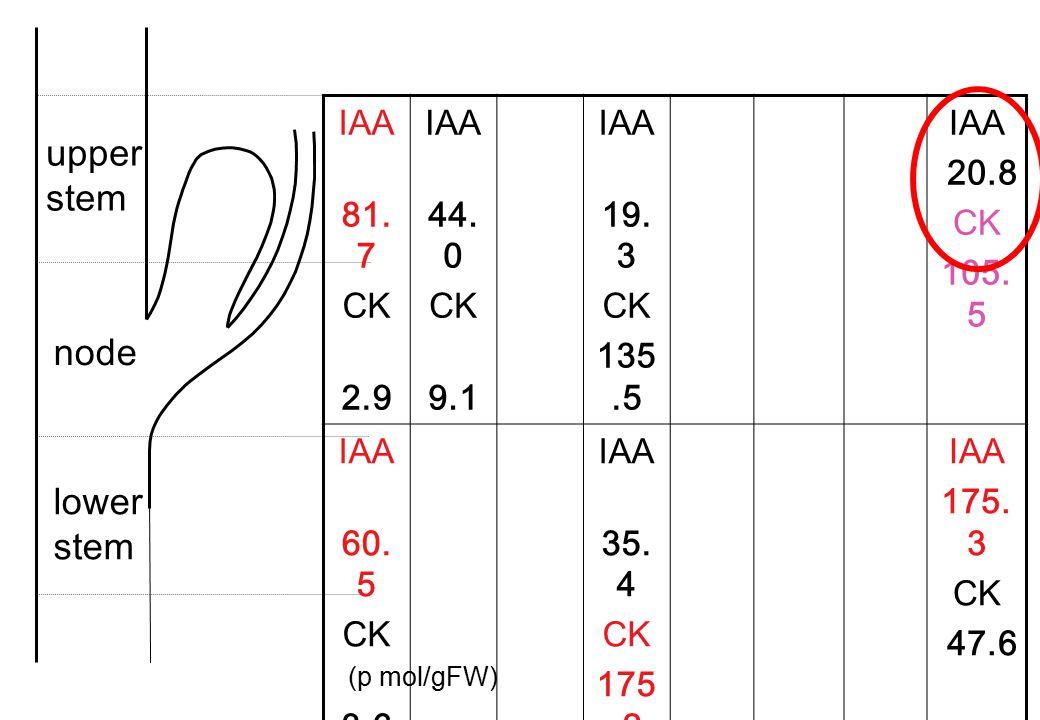 upper stem node lower stem IAA 81.7 CK 2.9 44.0 9.1 19.3 135.5 20.8