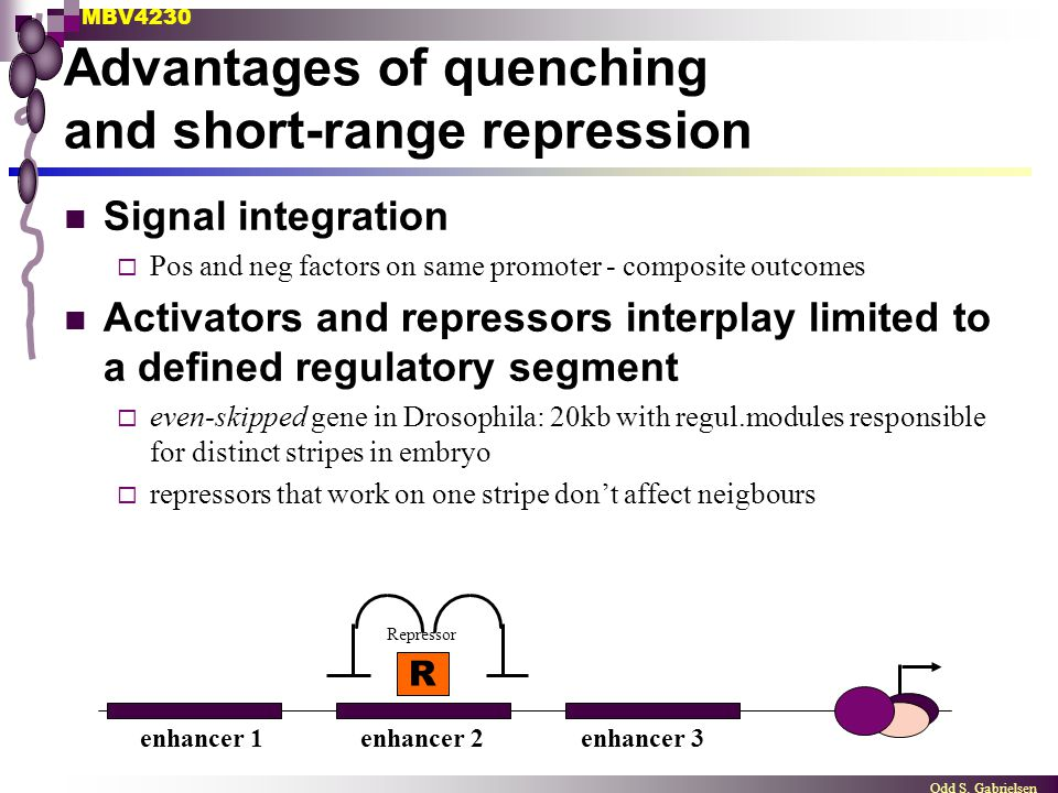 Advantages of quenching and short-range repression