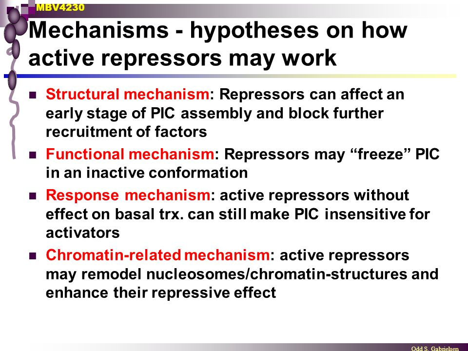 Mechanisms - hypotheses on how active repressors may work