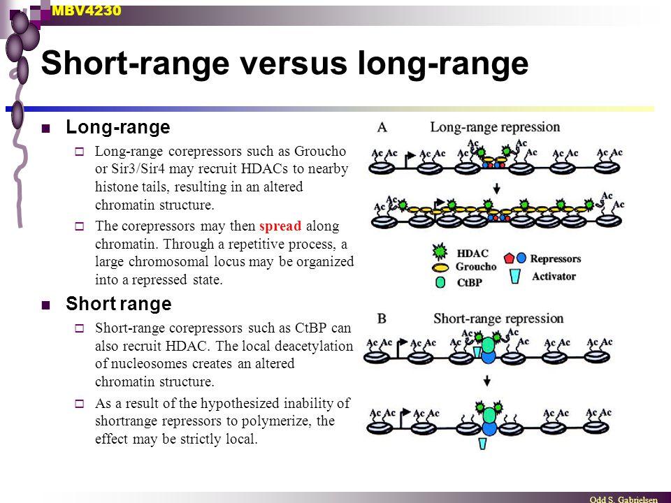 Short-range versus long-range