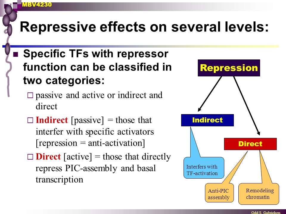 Repressive effects on several levels: