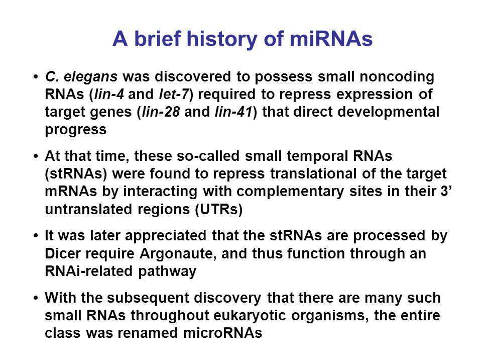 A brief history of miRNAs
