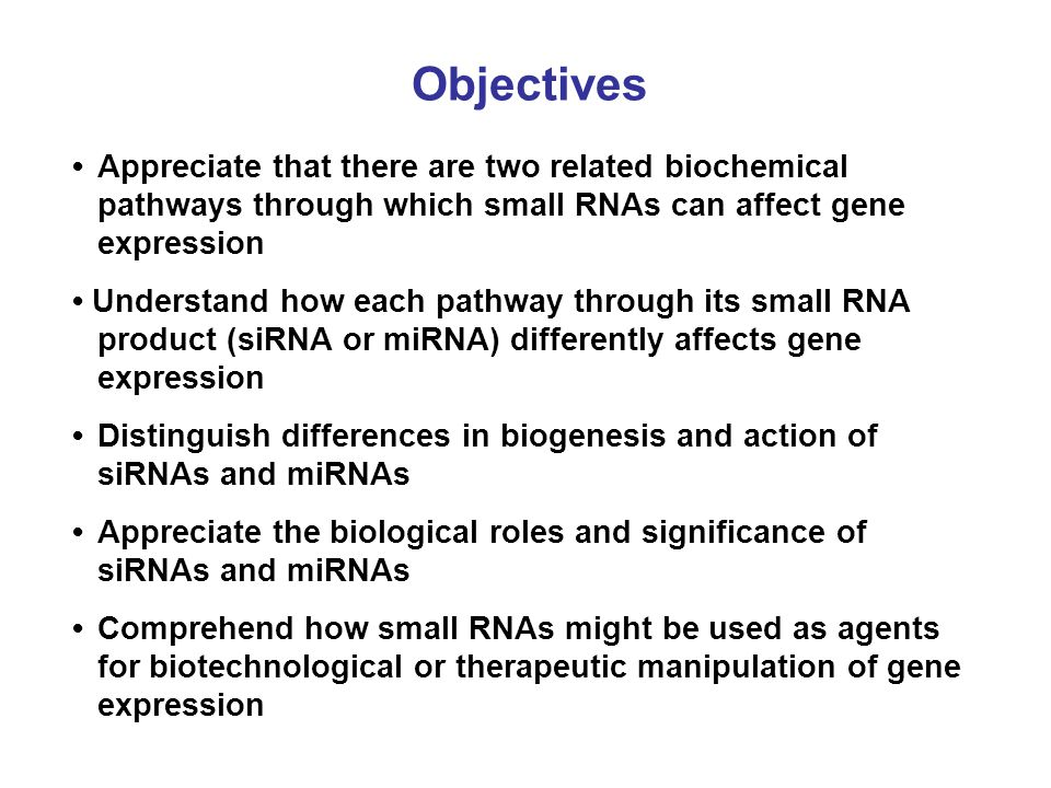 Objectives • Appreciate that there are two related biochemical pathways through which small RNAs can affect gene expression.
