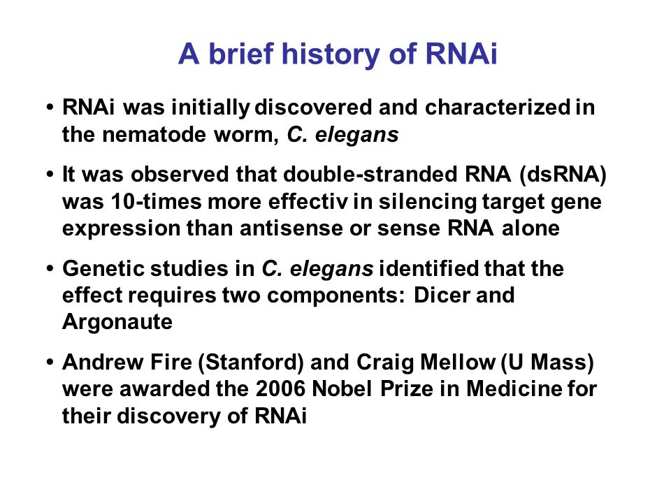 A brief history of RNAi • RNAi was initially discovered and characterized in the nematode worm, C. elegans.
