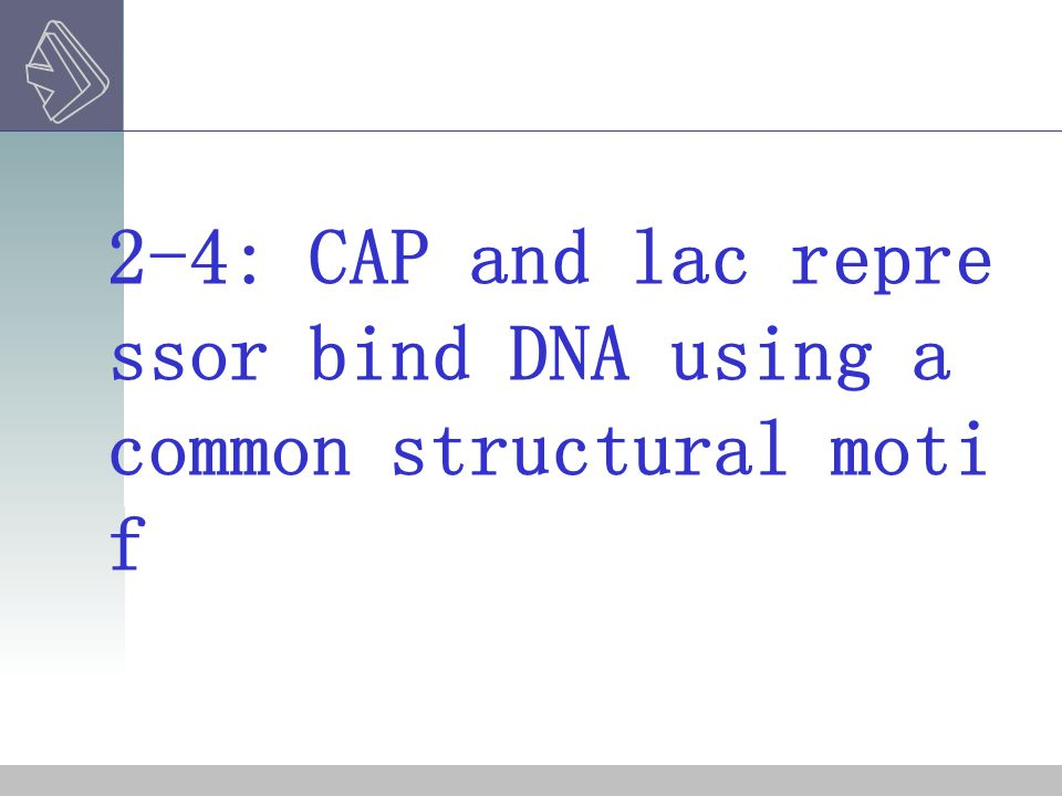 2-4: CAP and lac repressor bind DNA using a common structural motif