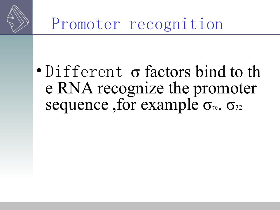 Promoter recognition Different σ factors bind to the RNA recognize the promoter sequence ,for example σ70.