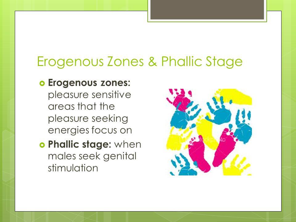 Erogenous Zones & Phallic Stage