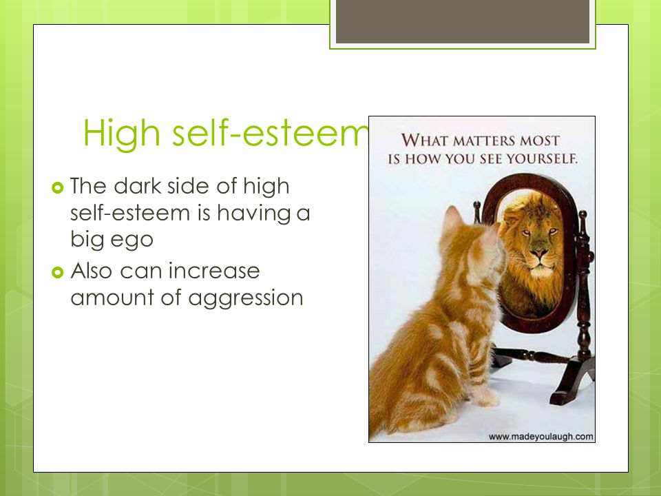 High self-esteem The dark side of high self-esteem is having a big ego