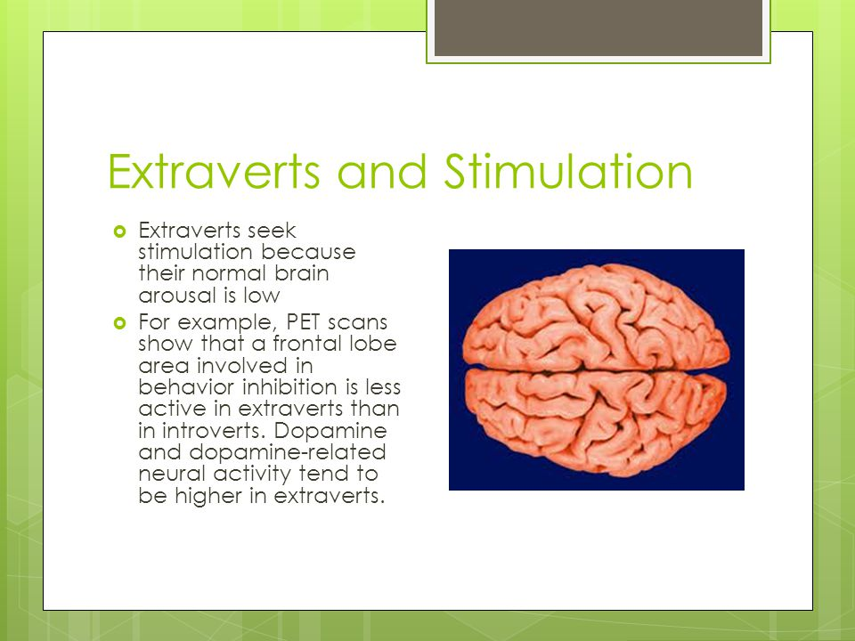 Extraverts and Stimulation