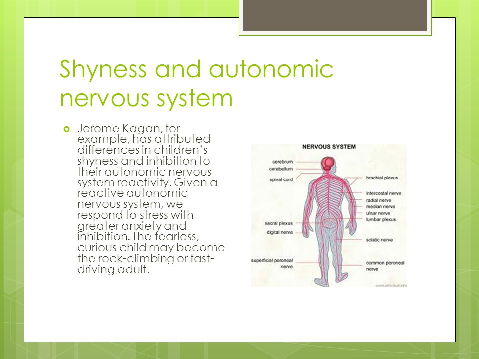 Shyness and autonomic nervous system