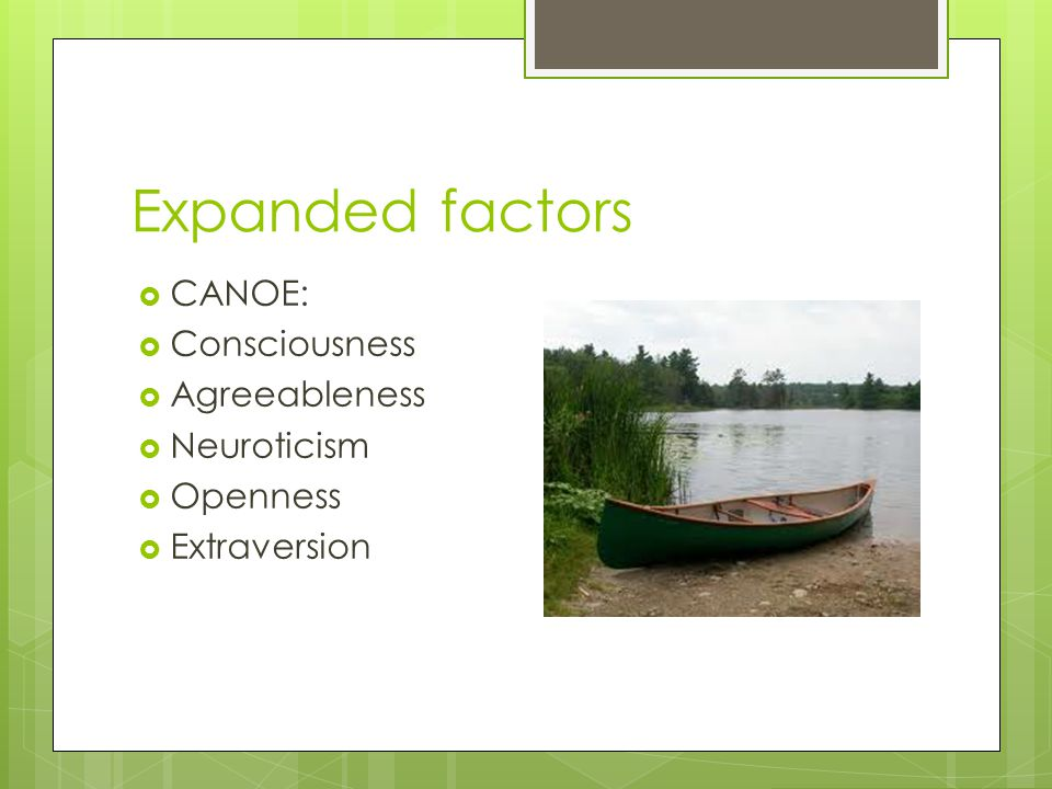 Expanded factors CANOE: Consciousness Agreeableness Neuroticism