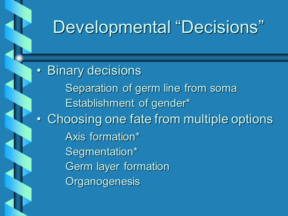 Developmental Decisions