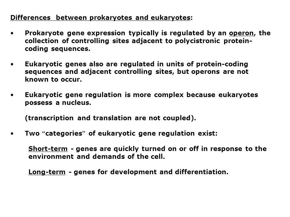 Differences between prokaryotes and eukaryotes: