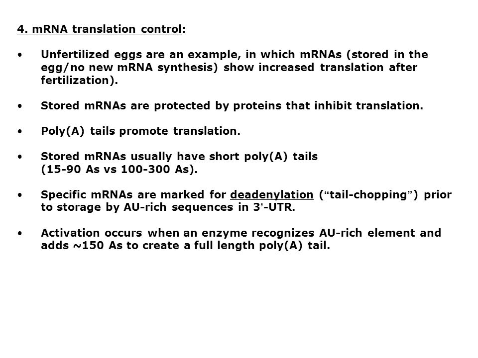 4. mRNA translation control:
