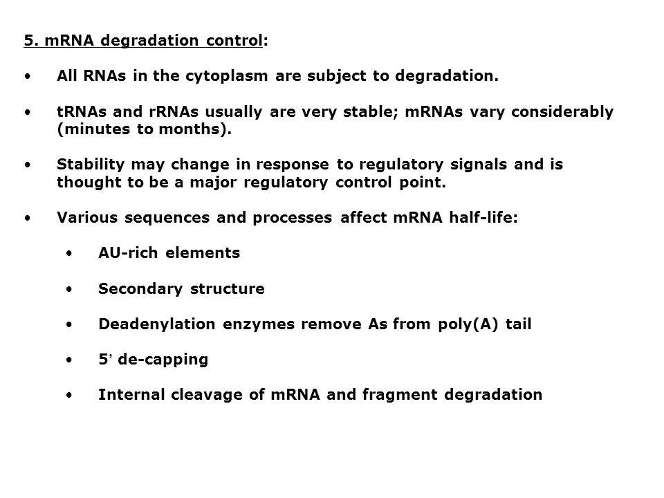 5. mRNA degradation control: