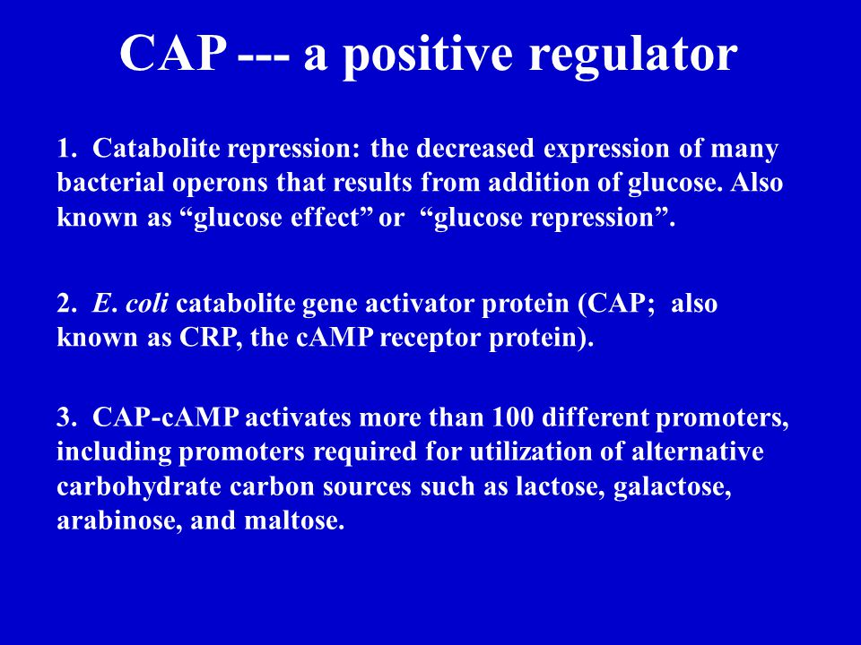 CAP --- a positive regulator