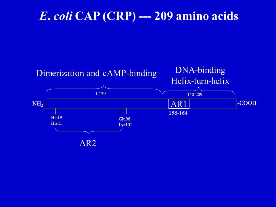 E. coli CAP (CRP) --- 209 amino acids