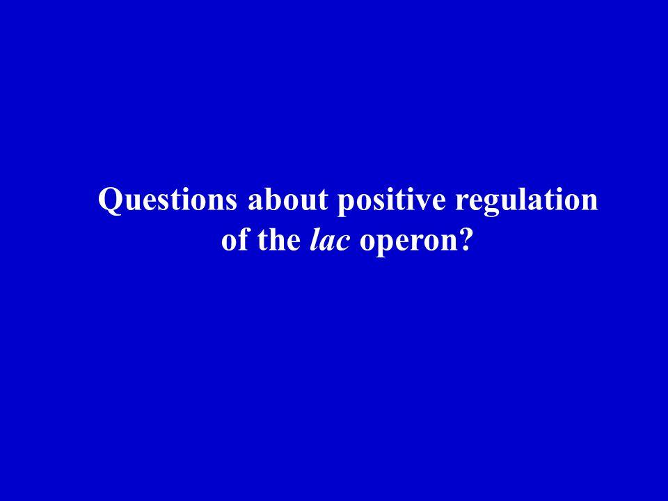 Questions about positive regulation