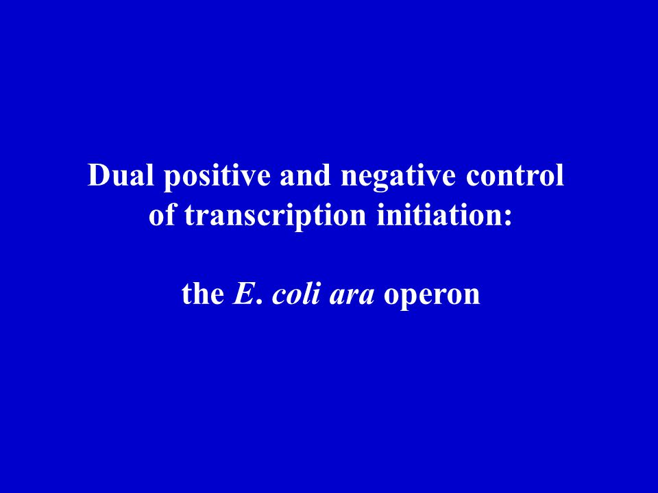 Dual positive and negative control of transcription initiation:
